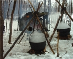 maple sugar festival photo from NPS