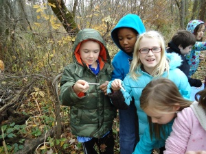 Third grade students at Brummit Elementary School survey macroinvertebrates in the LCEB river to determine if the river can support diverse populations.