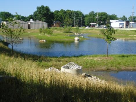 Thorgren Basin naturalization and retrofit