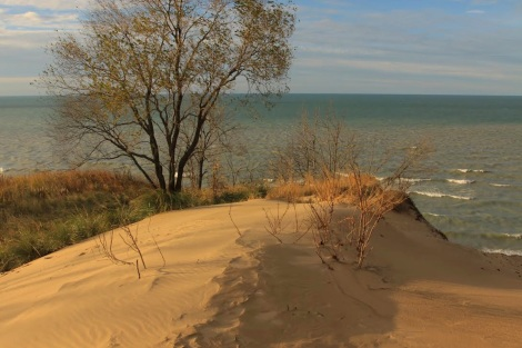 dune and lake - credit Bob Daum for Wordpress sticky